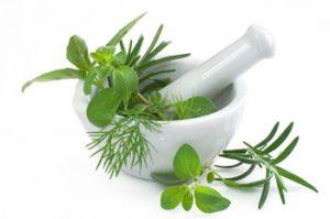 Natural Medicinal Products